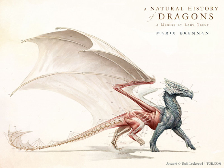 Todd Lockwood cover Natural History of Dragons Marie Brennan