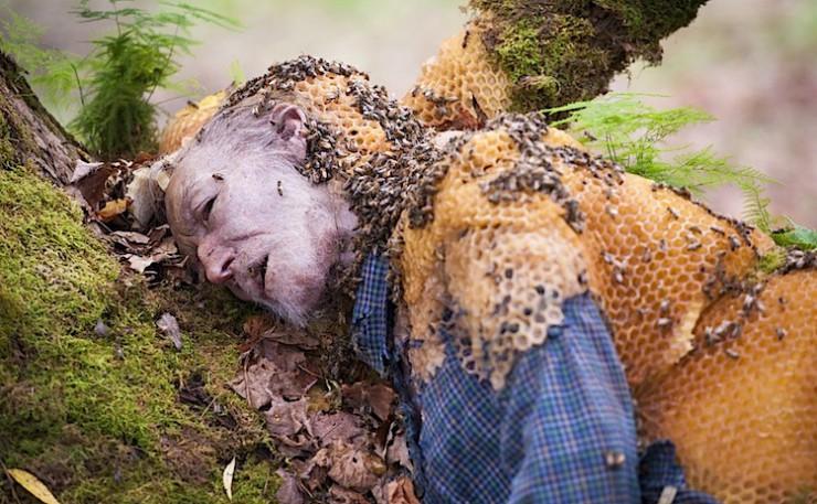 "Hannibal Bee Hive Man ""Takiawase"""
