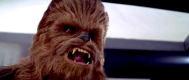 Chewbacca is angry