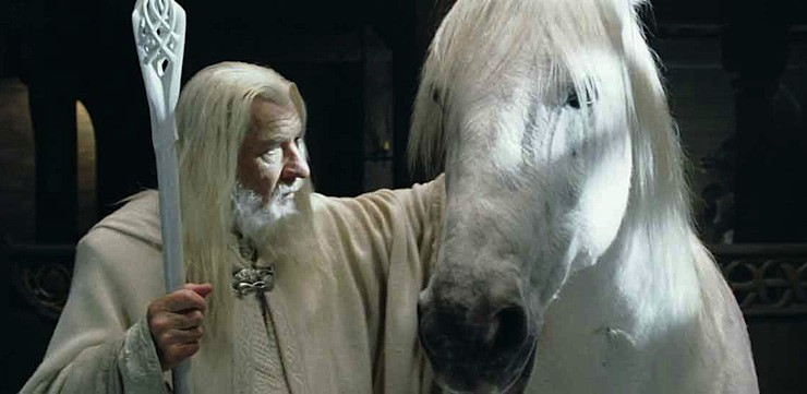 Shadowfax with Gandalf