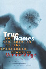 True Names Vernor Vinge virtual reality cyberpunk evolution