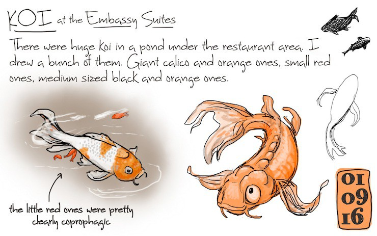 Ursula Vernon, sketch, fish