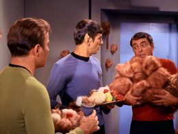Trek and Tribbles