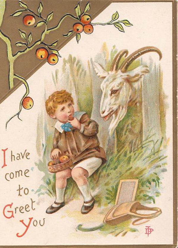 Christmas Card Goat