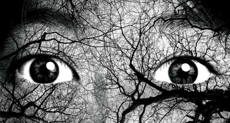 Horror in Translation: 8 Chilling Reads From Around the World