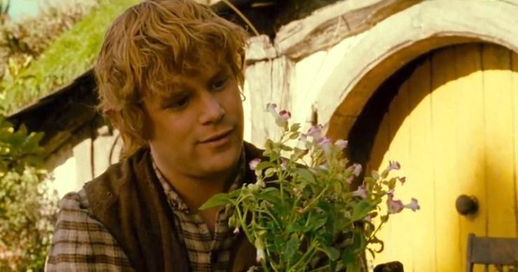 Hobbits, Samwise Gamgee