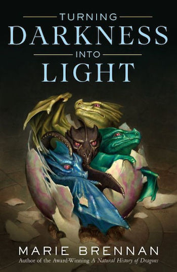 Turning Darkness Into Light by Marie Brennan, cover