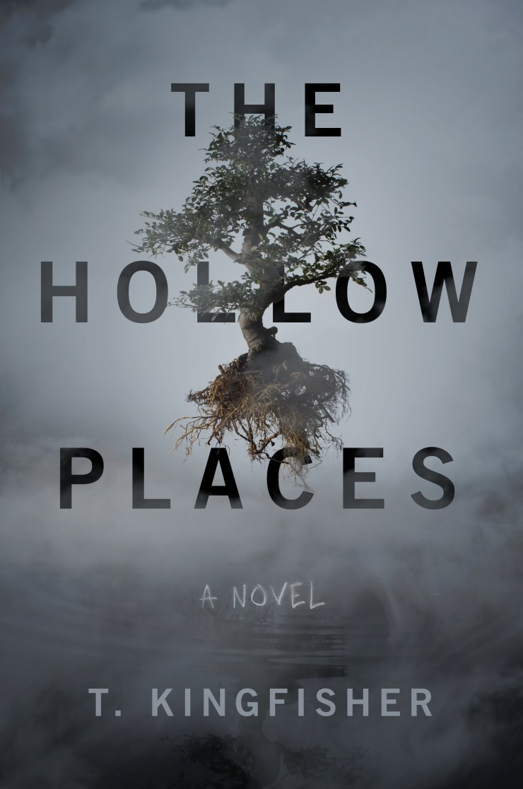 Book cover: The Hollow Places