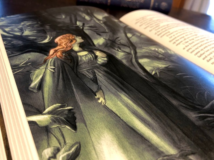 Illustration of Sansa in the Folio Society edition of A Clash of Kings
