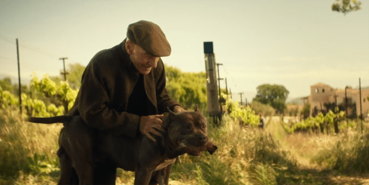 Jean-Luc Picard (Patrick Stewart) and his dog in the vineyard in Star Trek: Picard