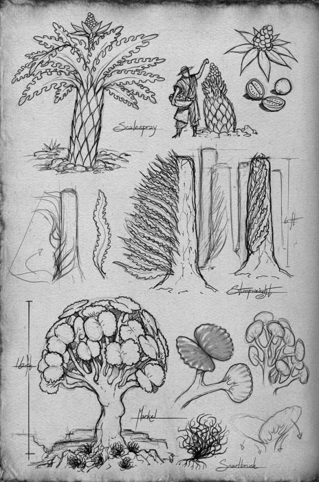 Shallan's sketchbook plants