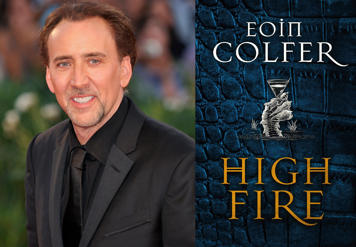 Nic Cage Will Voice Vern in Amazon's Adaptation of Eoin Colfer's Highfire
