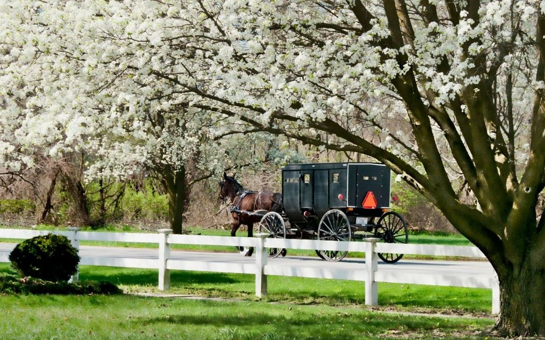 How I Celebrated Easter and Good Friday as an Amish American Child