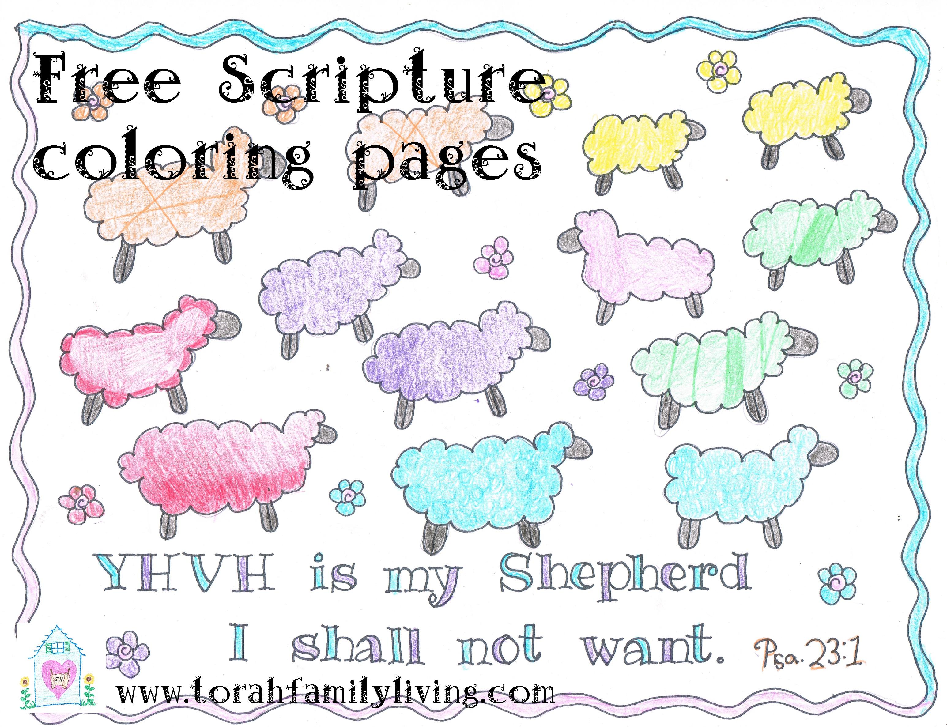 Torah tots coloring pages shabbat - Scripture Coloring Pages Torah Family Living