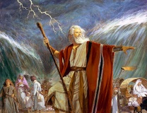 moses-image