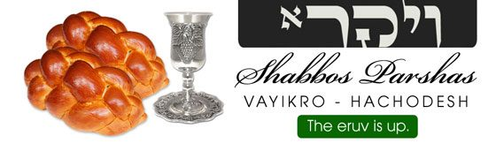 Shabbos_Bulletin_Vayikro_HaChodesh