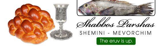 Shabbos_Bulletin_Shemini