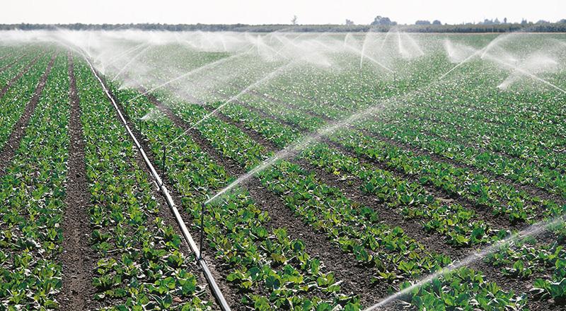 La CHD propone a los regantes de Soria que cedan dos hectómetros cúbicos para los cultivos del Bajo Duero