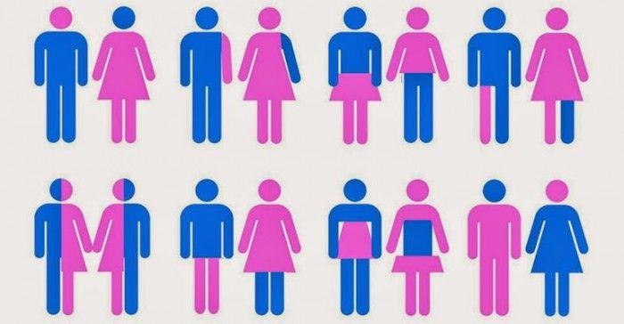 TTLP propone medidas para normalizar la igualdad de género y la diversidad sexual