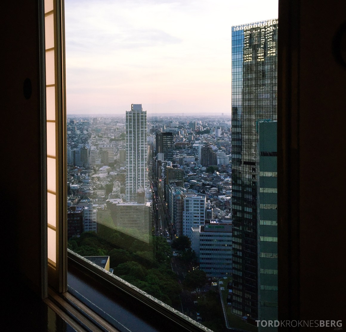 Hilton Tokyo Executive Lounge utsikt