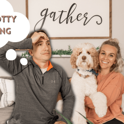 How to Train an Aussiedoodle Puppy | Puppy Potty Training Tips
