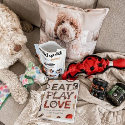 The Best Pet Toys and Wellness Products | Pet Products We're Loving Right Now