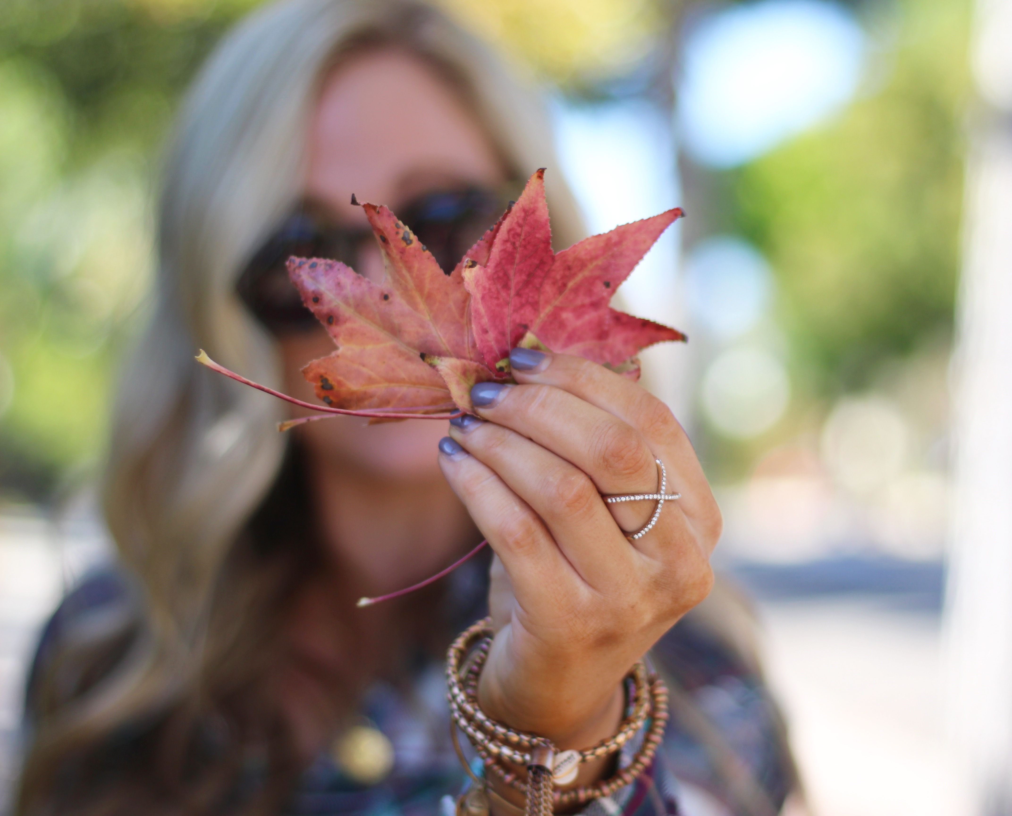 first day of fall blog