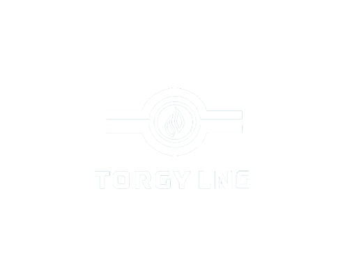 Torgy lng logo