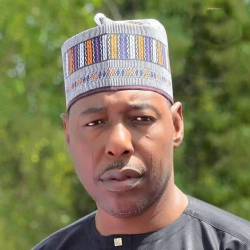 Governor Babagana Zulum of Borno State
