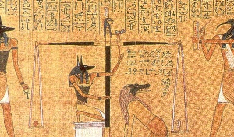 Il libro dei morti entrerà nelle biblioteche torinesi. L'iniziativa del Museo Egizio