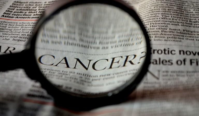 «I malati di tumore non sono guerrieri». La lettera della Fondazione Tempia dopo la morte di Nadia Toffa