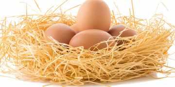 Uova biologiche contaminate