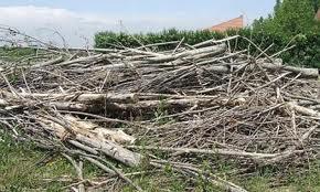 Sierra de la Ventana – Quema controlada de ramas en el basurero