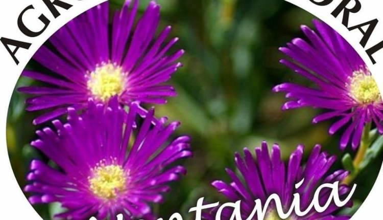 Sierra de la Ventana – Ya se viene la 16º muestra floral «Jardines Climáticos»»