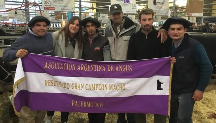 Palermo 2019 – Don Benjamín S.A. se quedó con el «Reservado Gran Campeón Macho Angus»