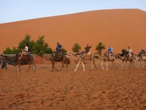 Experience the Moroccan lifestyle