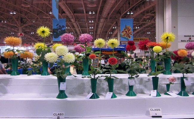 Canadian National Exhibition - Garden Show