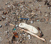 More litter dumped by passersby and washed ashore. (Selena Mann/Toronto Observer)