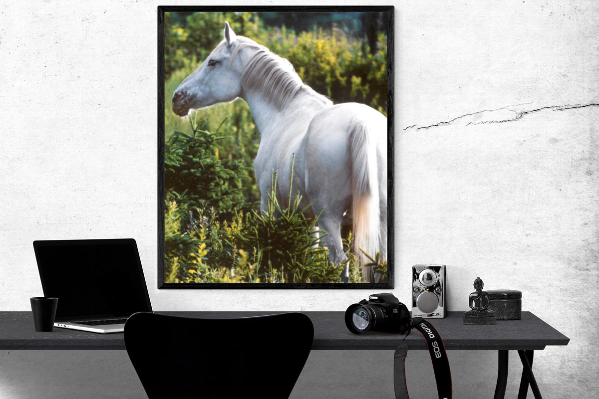 framed picture of horse over a desk