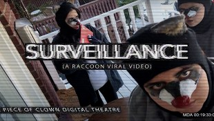 Surveillance (A Raccoon Viral Video) by The Toronto Raccoons