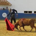 🇵🇹João Diogo Fera: arte y temple rumbo al sueño de ser matador de toros