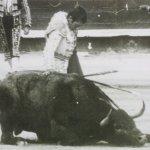 Andrés Vázquez y Baratero de Victorino Martín