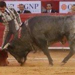 🇲🇽Ya se pueden dar corridas de toros en la CDMX