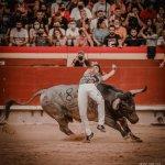 CASTELLÓN: concurso de recortadores con toros de @victorinotoros