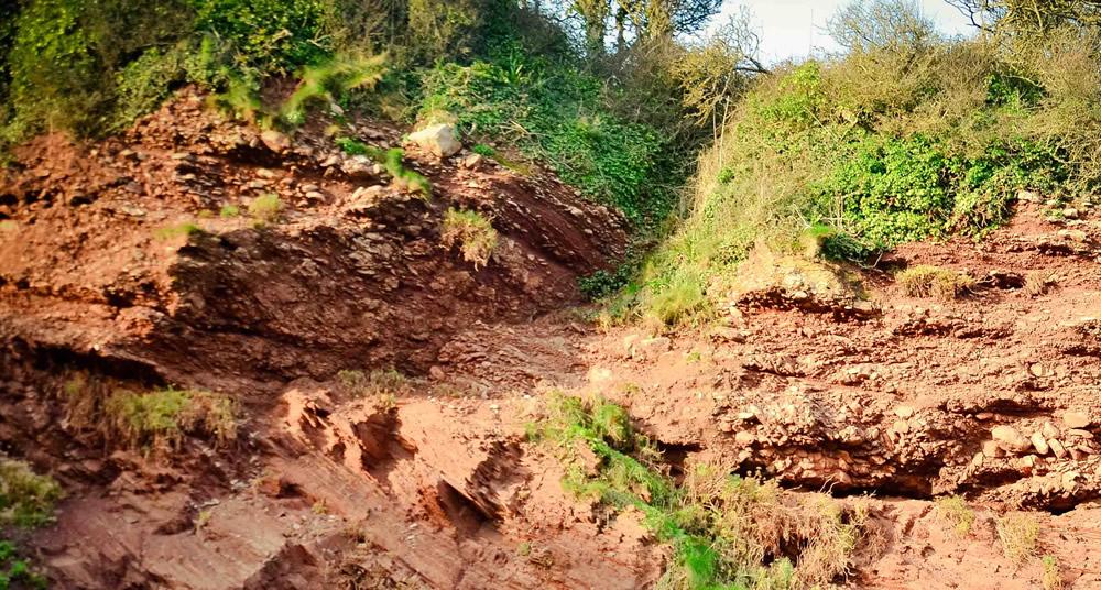 Saltern Cove Geology