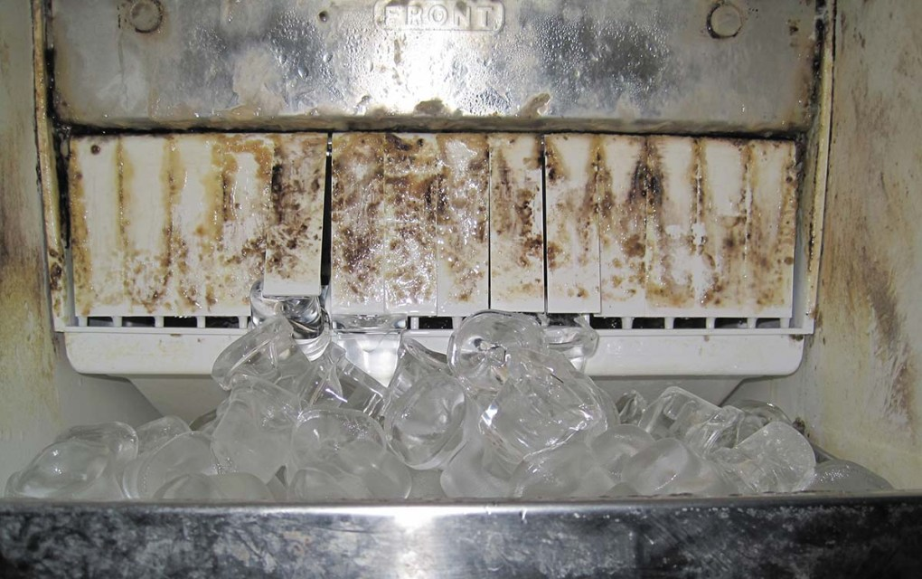 Bacteria growing in a dirty ice machine that is clearly visible to the user