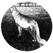 Wolf 1.32