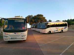 Rental of minibuses