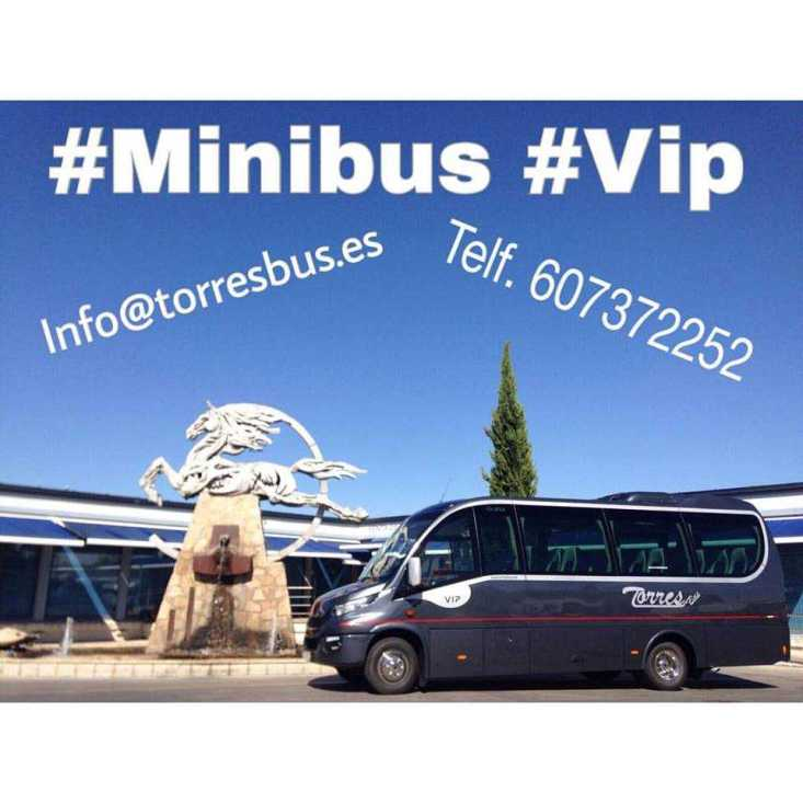 alquilar minibús precio 25 plazas Madrid