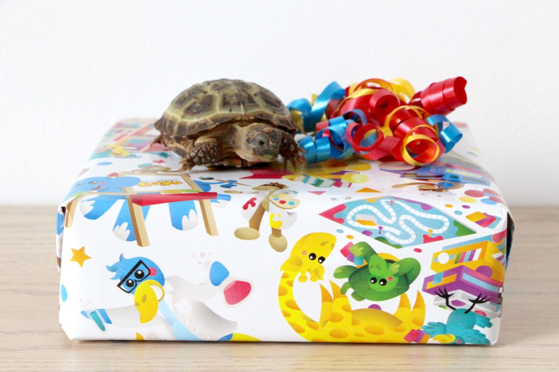 Waffles's mom always uses the best wrapping paper and ribbons!